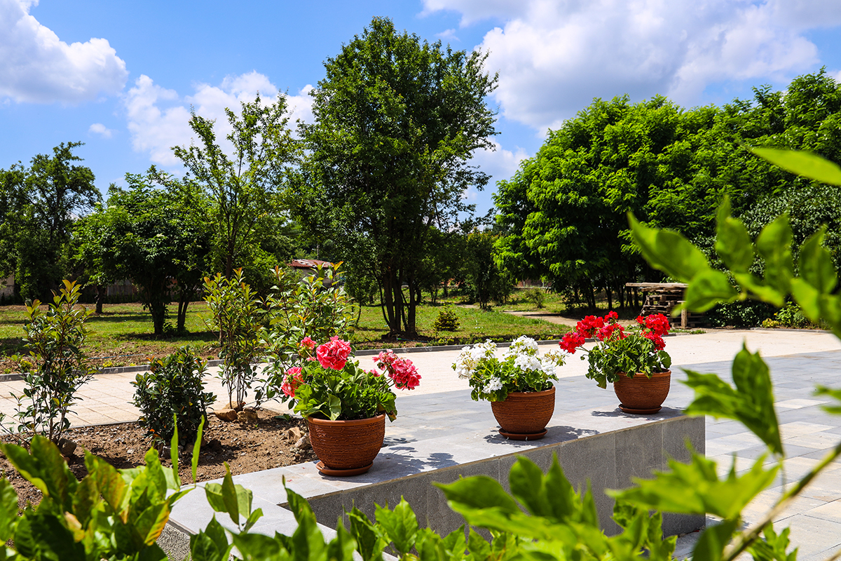 Медива Парк - градина